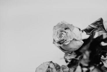 Doua situatii, un singur mod de a rezolva problema: cum gestionam un deces?